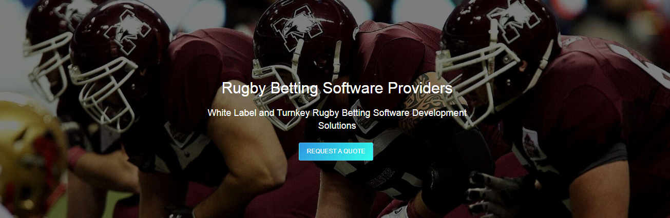 44833rugby-betting-software.png