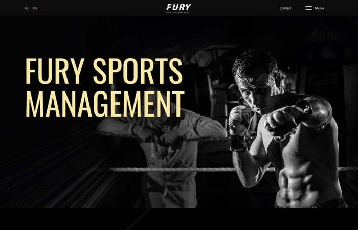 87424fury-sports.png